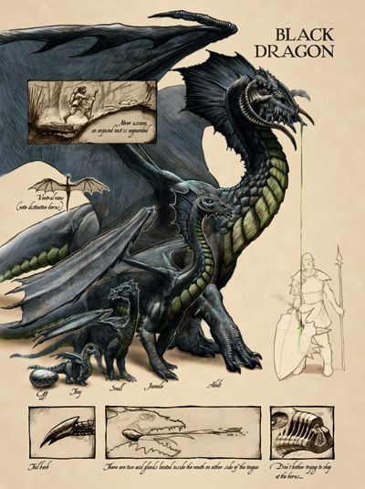 black_dragon_anatomy_-_lars_grant-west