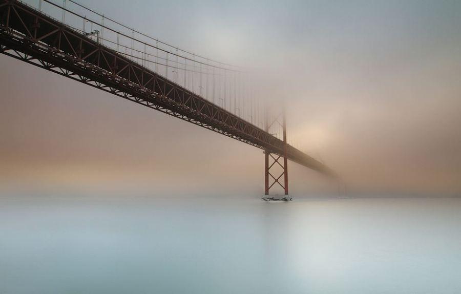 through-the-fog