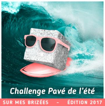 pave-2017-large